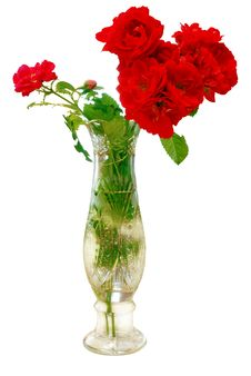 Free Bouquet Roses In Vase Stock Photo - 10036040