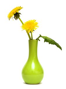 Free Dandelions In A Green Vase Royalty Free Stock Image - 10038576