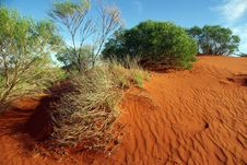 The Red Centre, Australia Stock Photo