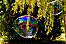 Free Nature, Reflection, Liquid Bubble, Water Royalty Free Stock Photo - 100327265