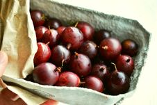 Free Natural Foods, Fruit, Local Food, Food Stock Images - 100332554