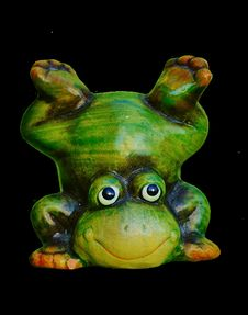 Free Ranidae, Amphibian, Frog, Tree Frog Royalty Free Stock Photography - 100335927
