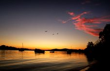 Free Sunrise. Noosaville. Royalty Free Stock Photo - 100369635