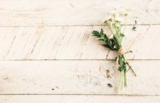 Free Flower, Leaf, Flora, Wood Royalty Free Stock Photo - 100399085