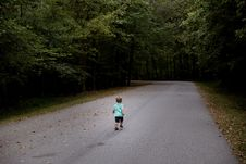Free Road, Path, Trail, Lane Stock Image - 100399161