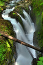 Free Sol Duc Falls Royalty Free Stock Photography - 10041417