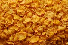 Free Cornflakes Background Royalty Free Stock Photography - 10041747