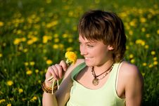 Free Dandelions Glade Royalty Free Stock Images - 10050269