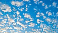Free Plumose Clouds Royalty Free Stock Image - 10051196