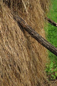 Free Hay Piles Royalty Free Stock Image - 10052186