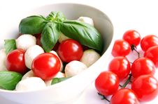 Free Mozzarella And Tomato Salad Royalty Free Stock Images - 10055929