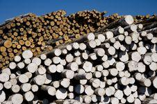 Free Logs Storage Royalty Free Stock Photos - 10056158