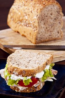 Free Sandwich Stock Photos - 10057343