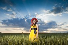 Free Beautiful Caucasian Girl In The Wheat Field Stock Photography - 10059102