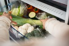 Free Vegetables In A Fridge Stock Images - 100552384