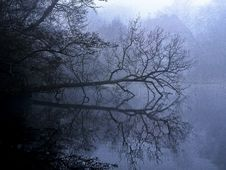 Free Water, Nature, Reflection, Fog Stock Photo - 100570640