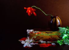 Free Still Life, Flower, Still Life Photography, Painting Royalty Free Stock Images - 100571369