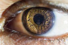 Free Eye, Macro Photography, Close Up, Eyelash Stock Images - 100577984
