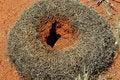 Free Ant Hill In Australian Desert Royalty Free Stock Image - 10062176