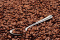 Free Spoon Atop Of Coffee Beans Royalty Free Stock Image - 10068136
