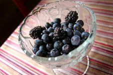 Free Blueberries And Blackberries Stock Image - 10062131
