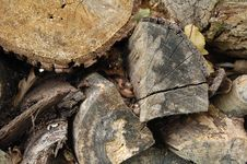 Free Old Firewood Stock Photography - 10062732