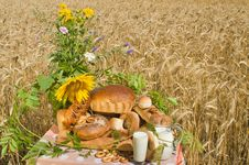 Free Wild Flowers And Bread. Royalty Free Stock Photo - 10065645