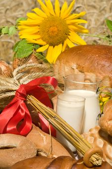 Free Sunflower And Bread. Royalty Free Stock Photo - 10065805