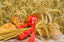 Free Wheat Sheaf. Royalty Free Stock Photos - 10065868