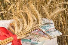 Free Crop Of Wheat And Money. Royalty Free Stock Images - 10065899