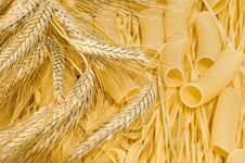 Free Macaroni, Noodles, Wheat Ears. Stock Photos - 10065993