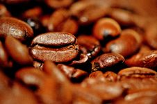 Free Caffeine, Cocoa Bean, Jamaican Blue Mountain Coffee, Coffee Stock Image - 100628631