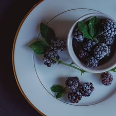 Free Dishware, Tableware, Plate, Blackberry Stock Images - 100633804