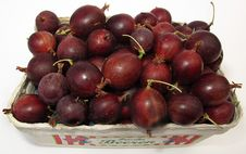 Free Fruit, Food, Produce, Local Food Stock Photo - 100633870