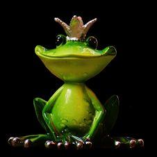 Free Ranidae, Tree Frog, Frog, Amphibian Stock Images - 100638714