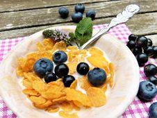 Free Food, Vegetarian Food, Dish, Dessert Stock Image - 100638771