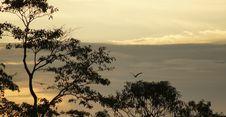 Free Sky, Ecosystem, Savanna, Branch Stock Photography - 100645412