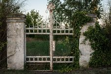 Free Iron, Wall, Gate, Grass Royalty Free Stock Images - 100646029