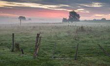Free Sky, Grassland, Morning, Tree Royalty Free Stock Photos - 100646508