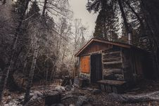 Free Shack, Log Cabin, Tree, Woodland Stock Image - 100651351