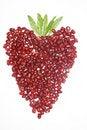 Free Heart Pomegranate Stock Photos - 10079193
