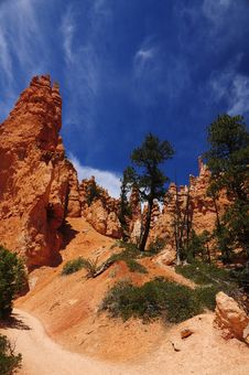 Free Bryce Canyon Royalty Free Stock Photo - 10073465