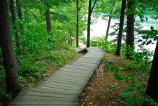 Free Boardwalk In Forest Stock Image - 10074221