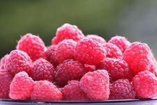 Free Fresh Fruits 4 Royalty Free Stock Photography - 10075977