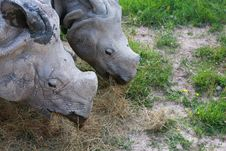 Free 2 Rhinos Royalty Free Stock Photography - 10077387
