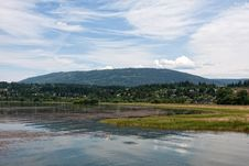 Salmon Arm Royalty Free Stock Images