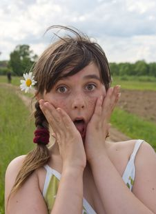 The Astonished Girl With Camomille Stock Image