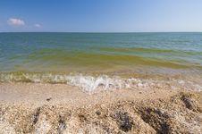 Sea Shells Beach Stock Photography
