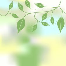 Free Floral Background, Ornament, Leaves Stock Image - 10079161