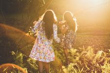 Free Light, Sunlight, Emotion, Friendship Royalty Free Stock Photo - 100706805
